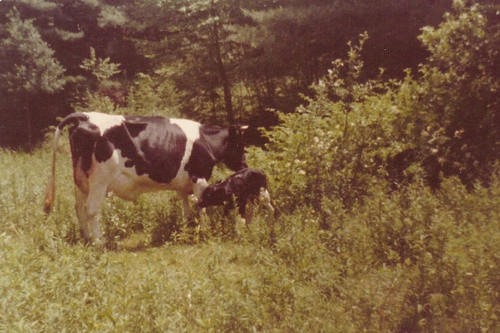 "Nothing Like Growing up on a Farm… (The Original ""Animal House"") (2/5)"