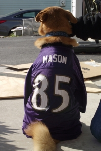 Fletcher is a BIG Ravens fan!
