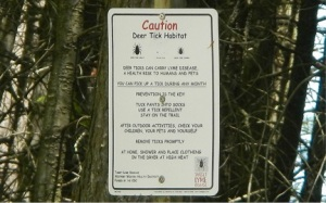 Caution Tick Habitat