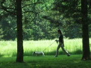 Nature walks are one of the activities offered to lodging clients.