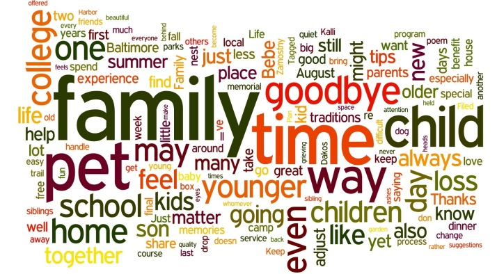 one year wordle
