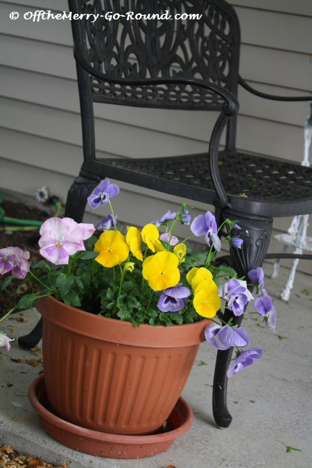 "Nothing says ""spring"" like a pot of pansies by your front door. This is one of my favorite spots to catch a cup of coffee or tea."