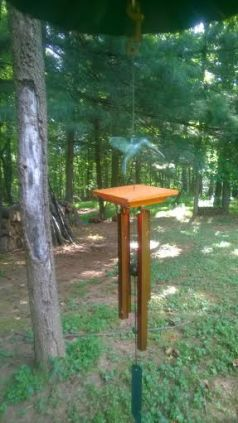 Have you tinkled your wind chime today?